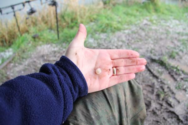 10mm hail