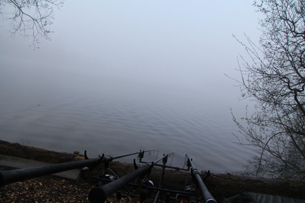 Then the mist drifted in