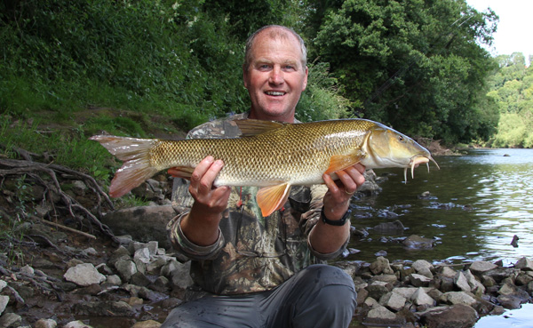 Beautiful Wye barbel