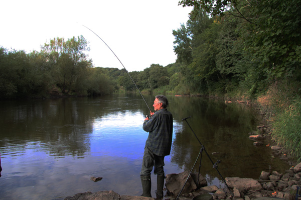 Jeff playing a barbel