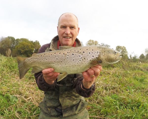 Sea Trout of about 4lbs