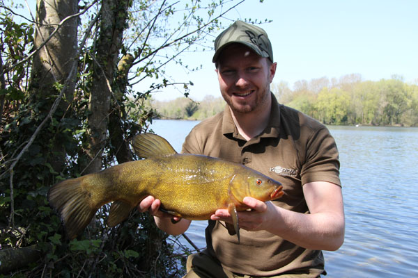 Another tench