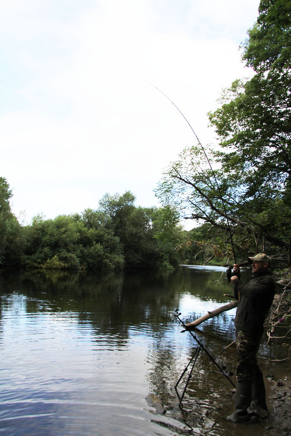 Steve playing a barbel