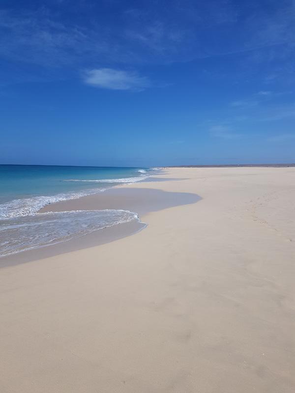 busy-beach